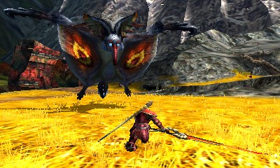 Monster Hunter 4 Ultimate Beasts - Kecha Wacha Subspecies - Eyes