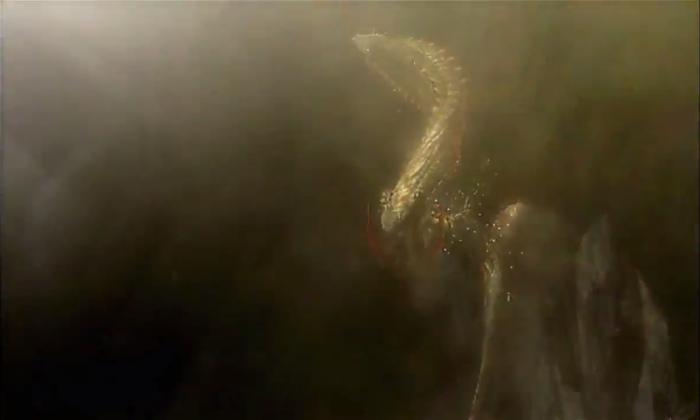 Monster Hunter 4 Ultimate Beasts - Dalamadur Subspecies - Moving